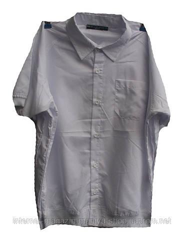 Мужская рубашка  подросток резинка