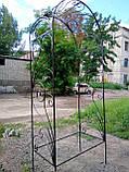 Арка кованая, фото 2