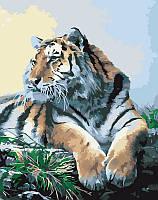 Картина по номерам Гордый тигр, 40x50 см, Идейка в подарочной упаковке (КН2460)