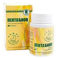 Пентабион Арго (пробиотик для восстановления кишечника, хитозан, бифидобактерии, лактобактерии, дисбактериоз), фото 1