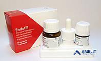 Эндофил (Endofill. PD), набор: порошок 15г + жидкость 15мл + аксессуары)