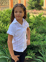 Блузка на девочку с коротким рукавом  мм400, фото 1