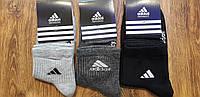 """Женские стрейчевые носки в стиле""""Adidas""""Турция(36-41), фото 1"""