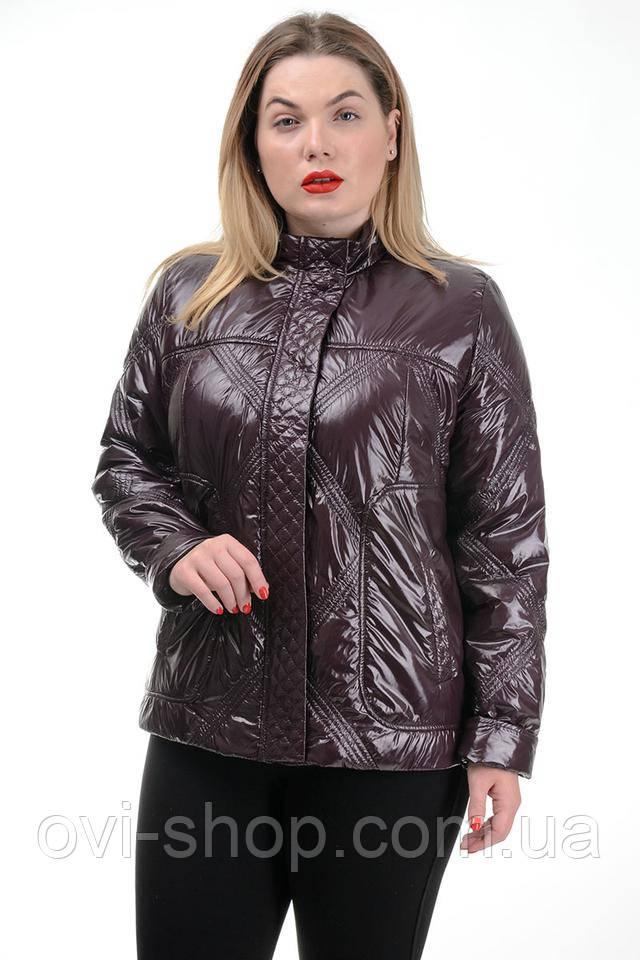 куртки лаковые