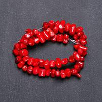 Бусины Коралл красный рубка d-11х13ммнитка L-40см