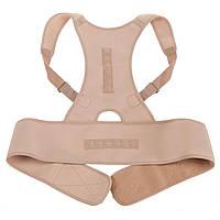 🔝 Магнитный корсет для спины, ортопедический, Royal Posture, цвет - бежевый, размер XL , Корсеты и корректоры осанки