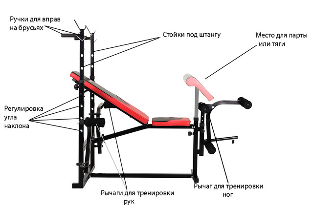 Упражнения на силовой скамье