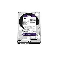 Жорсткий диск Western Digital Purple 1TB 64MB WD10PURZ 3.5 SATA III