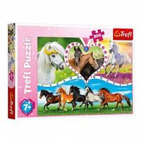 Пазл Красивые кони 200 эл