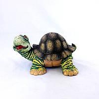 Черепаха копилка цветная гипс КГ013 цв