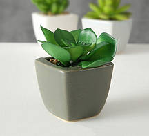 Суккулент искусственное растение в горшке h9см микс полистоун Гранд Презент 7089000