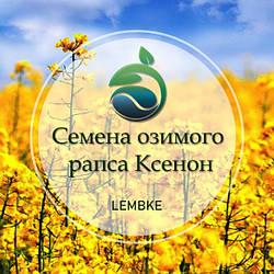 Семена озимого рапса Ксенон «Лембке» (Lembke)