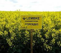 Семена озимого рапса Мерседес «Лембке» (Lembke)