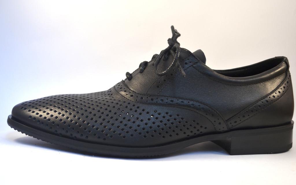 Rosso Avangard BS Felicite Black Perf летние кожаные туфли в сеточку обувь большая мужская 50 размер