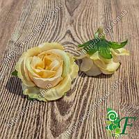Головка розы Спирит капучино