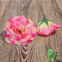 Головка чайной розы малиново-салатовый