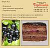 Торт №21, Шоколадный торт со смородиной/черникой