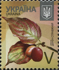 Поштова марка України, 8 грн., Літера V
