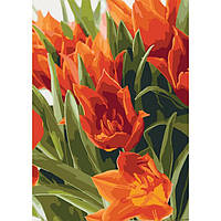 Картина по номерам на холсте Яркие тюльпаны, KHO3012