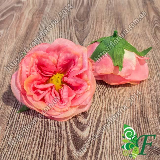 Головка розы пионовидной_ лососевый
