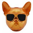 Колонка беспроводная Dog PRO портативная Bluetooth голова Бульдог, фото 8