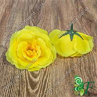 Головка чайной розы желтый
