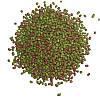 Витаминизированный корм ТМ Золотая рыбка Черепаха для мелких рептилий, 1кг