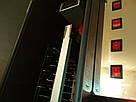 Электростатическая коптильня холодного копчения COSMOGEN CSFE-2000, фото 3