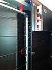 Электростатическая коптильня холодного копчения COSMOGEN CSFE-2000, фото 5