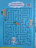 Раскраска A4 8 стр., Кошки, фото 3