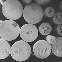 Капролон стержень/лист, фото 3
