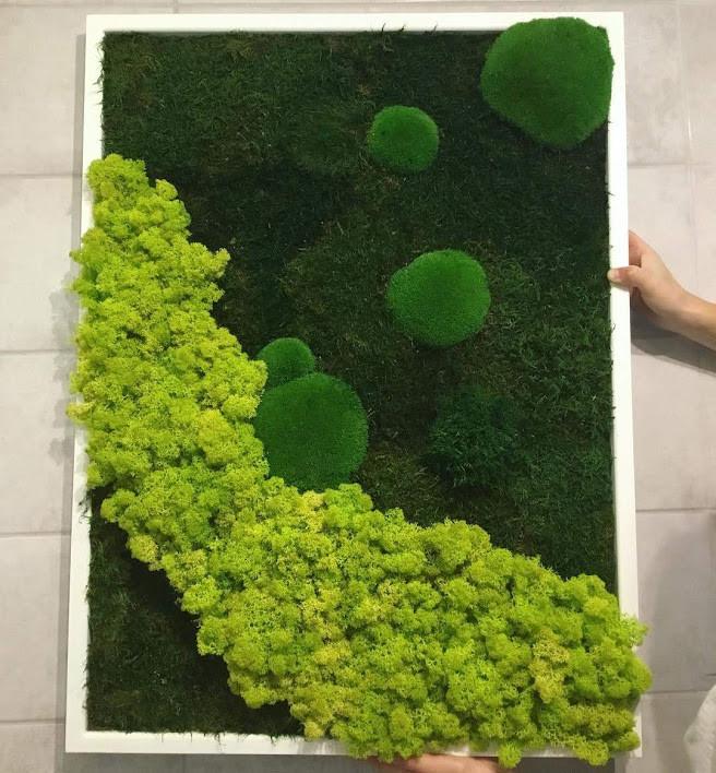 Картина из мха