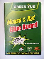 Клеевая ловушка книжка с  приманкой от мышей и крыс Малая 17*24 см качество Green Yue