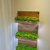 Услуги по озеленению