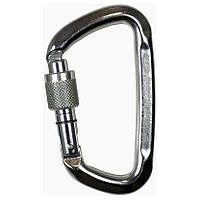 Карабін Climbing Technology D-shape SG stainless steel Climbing Technology (1053-4C5280C V1A)