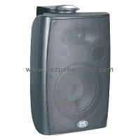 Настінний гучномовець IPS-W20W