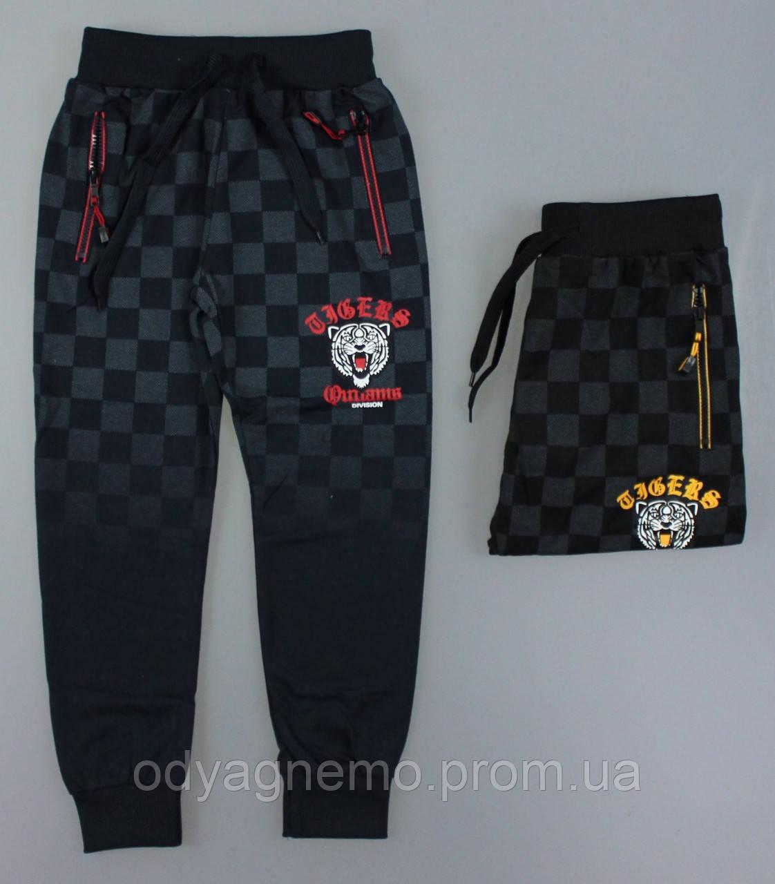 Спортивные брюки для мальчиков Grace оптом , 134-164 pp.