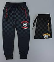 Спортивные брюки для мальчиков Grace оптом , 134-164 pp., фото 1