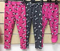 Лосины утепленные для девочек Disney оптом, 98/104-134 рр .