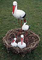 Семья аистов в гнезде