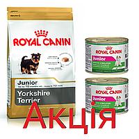 Роял Канін Йоркширський тер'єр юніор Royal Canin Yorkshire Junior сухий корм для цуценят 1,5 кг + 2 консерви