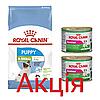 Роял Канін Ікс Смол Паппі Юніор Royal Canin Xsmall Puppy сухий корм для собак дрібних порід 1,5кг + 2 консерви