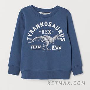 Утепленный свитшот H&M для мальчика, фото 2