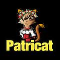"""интернет-магазин """"Patricat"""""""