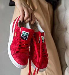 Женские кроссовки Puma x careaux x rose basket porcelain. Живое фото. Топ качество (Реплика ААА+)