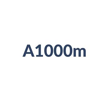 A1000m