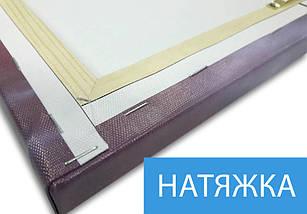 Модульная  картина Экзотические цветы фото на Холсте син., 65x65 см, (65x20-3), фото 3