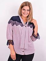 Блузка жіноча колір пудра 50-64, фото 1