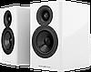 Acoustic Energy AE 500 полочные акустические системы