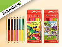 Набор двухсторонних цветных карандашей 12 штук 24 цвета